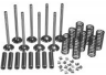 VOKM120 Z120 ENGINE VALVE OVERHAUL KIT