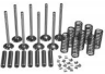 VOKM129 Z129/Z134 ENGINE VALVE OVERHAUL KIT